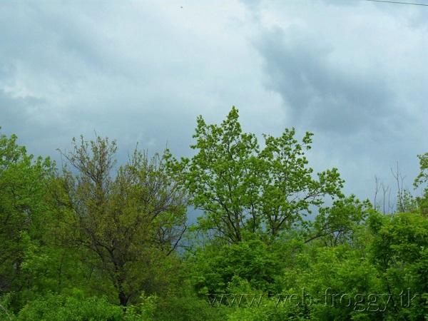 Пейзаж весенний