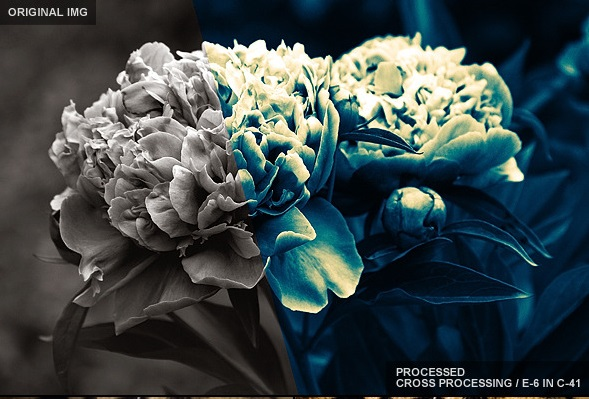 kupitj-presety-dlja-lightroom-4