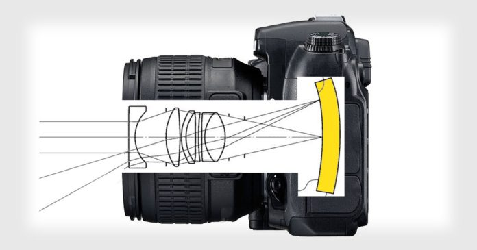 сенсоры Nikon