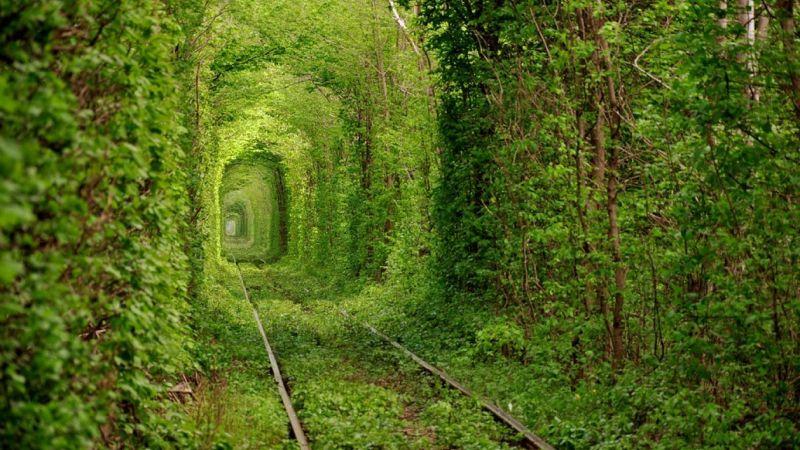 https://nataliabazilenco.com/foto/mira/uploads/2017/09/tunel-koxannja.jpg