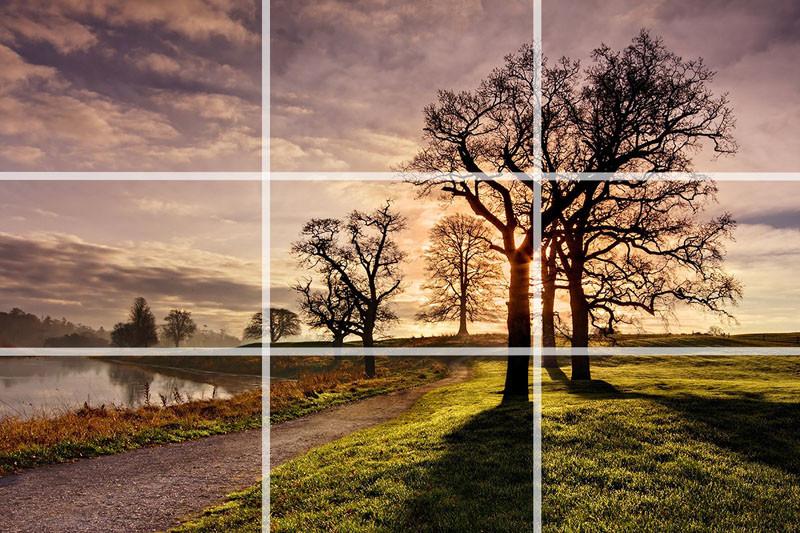 Основы композиции в фотографии