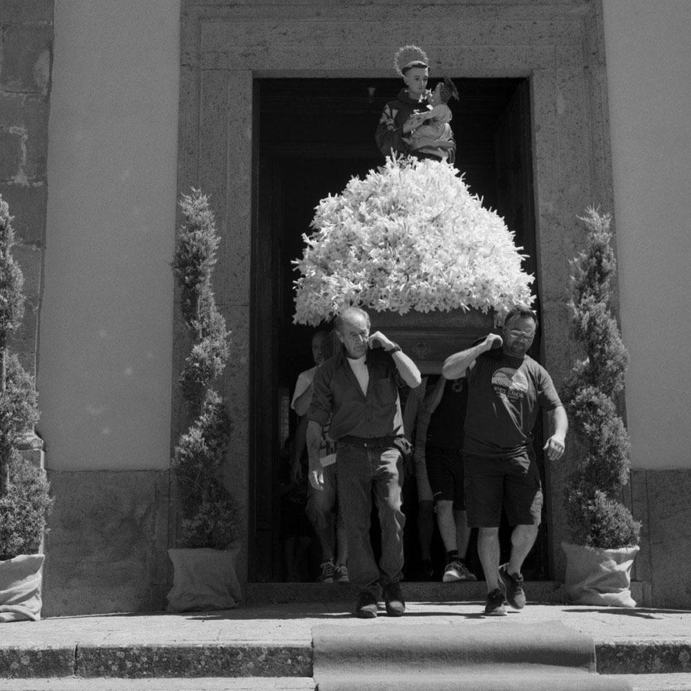 Тысяча лилий: фотопроект Маргриеты Желтема