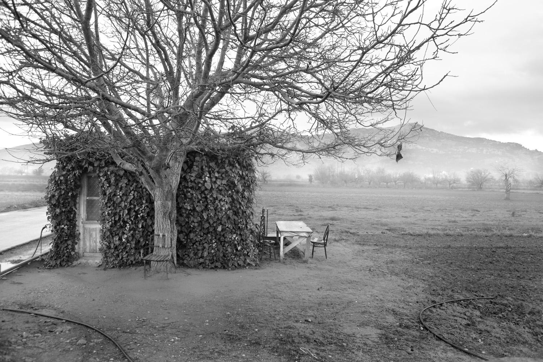 Сады Обливиона: странные пост-сельскохозяйственные пейзажи