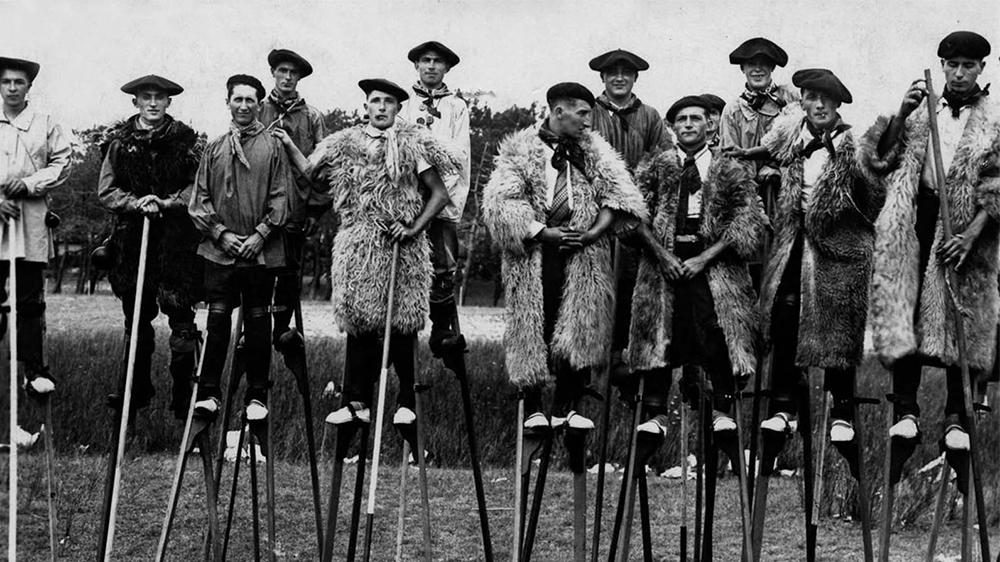 Французские овцепасы 1843-1937 гг.