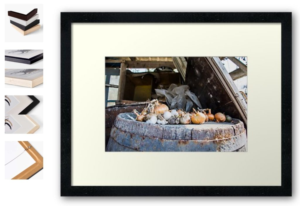 Onion and Garlic Still Life Framed Prints